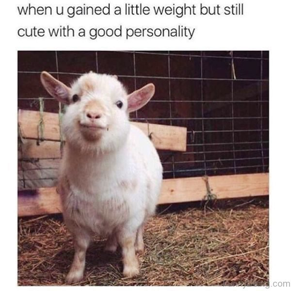 When You Gained A Little Weight