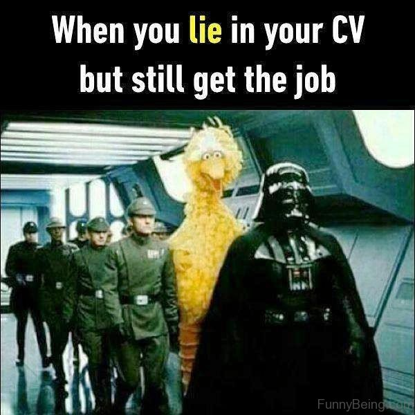 When You Lie In Your CV
