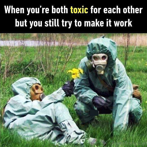 When You re Both Toxic For Each Other