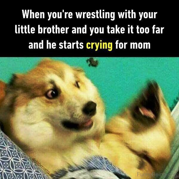 When You re Wrestling