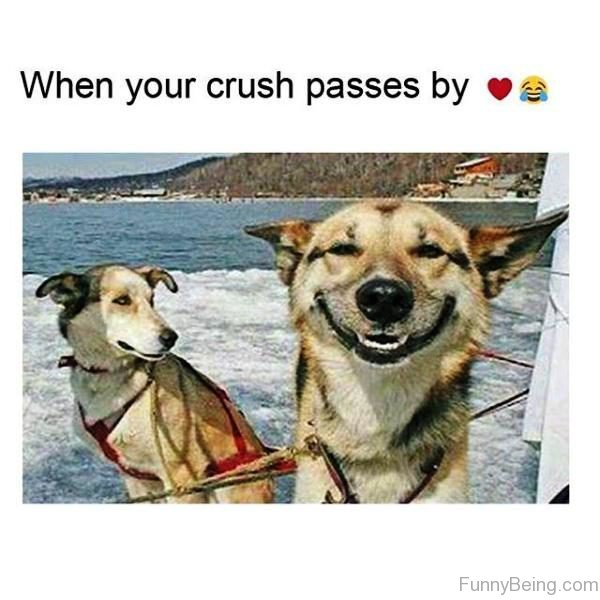 When Your Crush Passes By