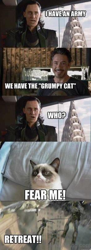 We Have The Grumpy Cat