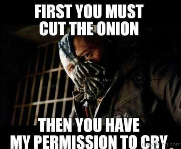 First You Must Cut The Onion