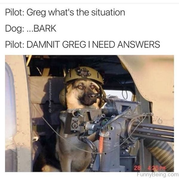Greg Whats The Situation