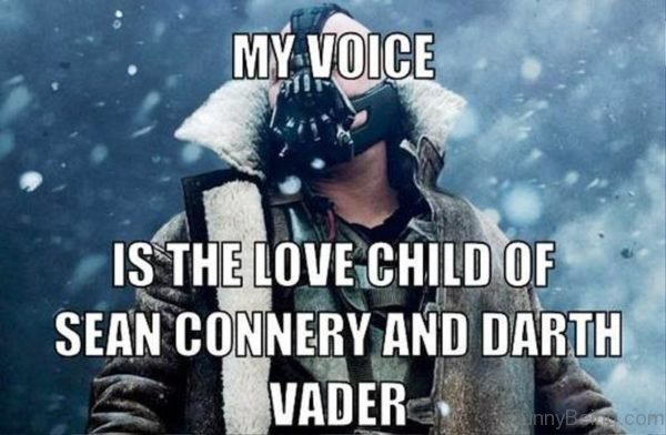 My Voice Is The Love Child Of