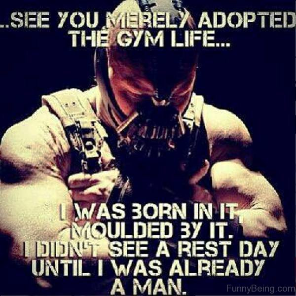 See You Merely Adopted The Gym Life